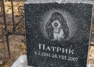 Памятники домашним животным в спб надгробные памятники каталог липецк